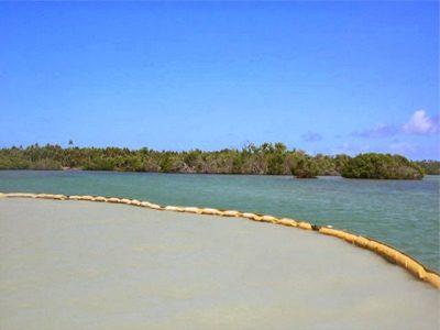 Lưới chắn bùn