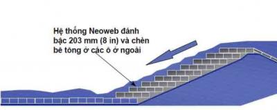 NEOWEB o ngan hinh mang chân khay